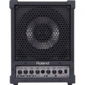 Roland Cube Monitor